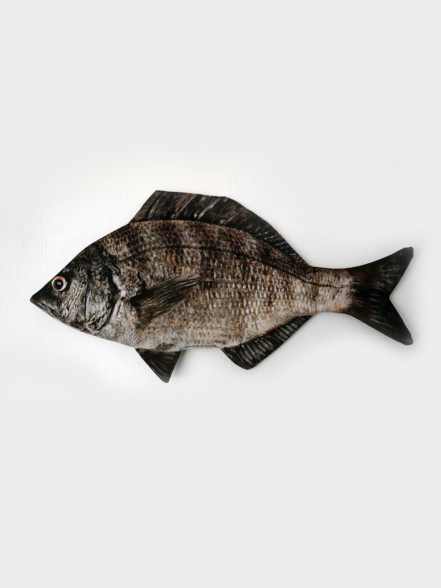 Black Porgy Fish Pencil Case