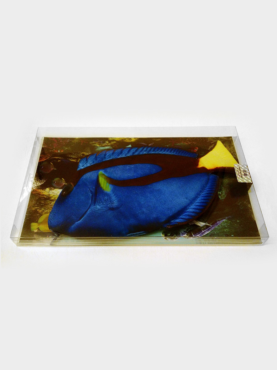 Blue Tang Fish Pencil Case